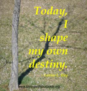 I shape my destiny
